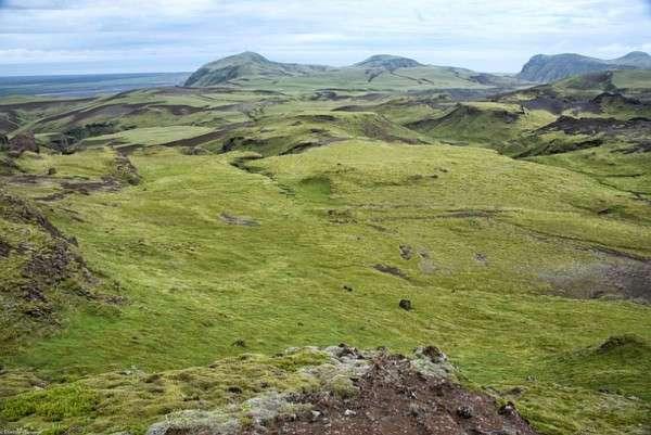 Мох в Исландии, Лавовые поля (11)