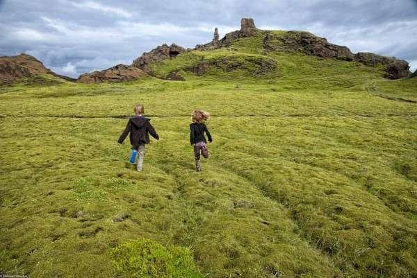 Мох в Исландии, Лавовые поля (12)