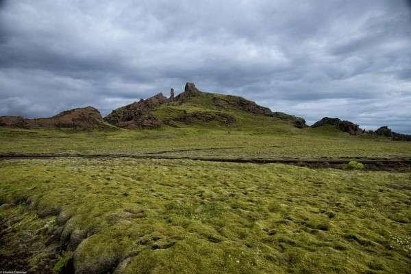 Мох в Исландии, Лавовые поля (14)