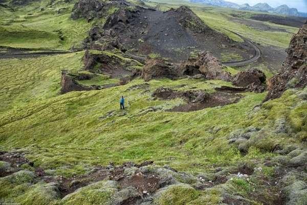 Мох в Исландии, Лавовые поля (15)