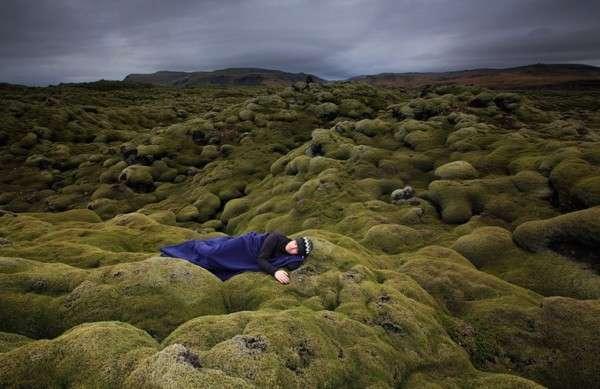 Мох в Исландии, Лавовые поля (16)