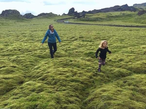 Мох в Исландии, Лавовые поля (8)