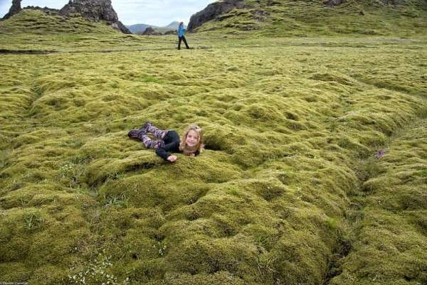 Мох в Исландии, Лавовые поля (9)