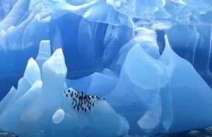 Самые древние айсберги в мире (4)