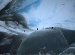 Самые древние айсберги в мире (9)