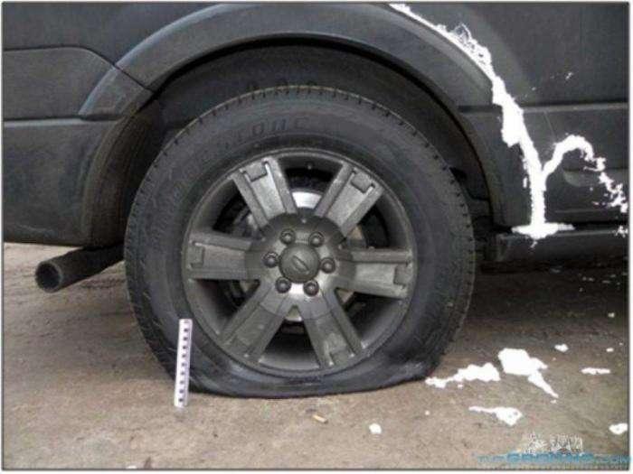Монтажною піною - за паркування на газоні (3 фото)