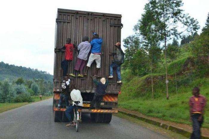 Тільки в Африці (40 фото)