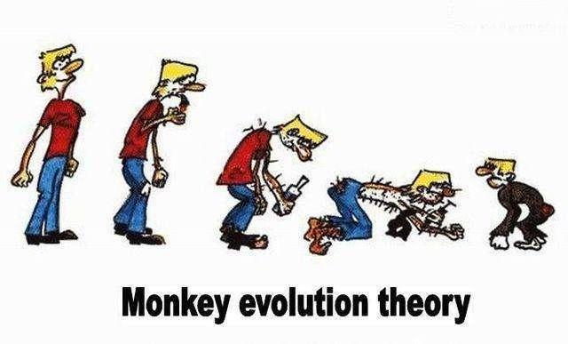 Еволюція людства і не тільки (40 фото)