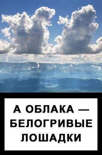 Попередження (40 фото)