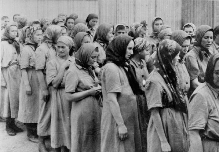 Светлый ангел из Освенцима: трагический подвиг Гизелы Перл белые страницы истории,всемирная история