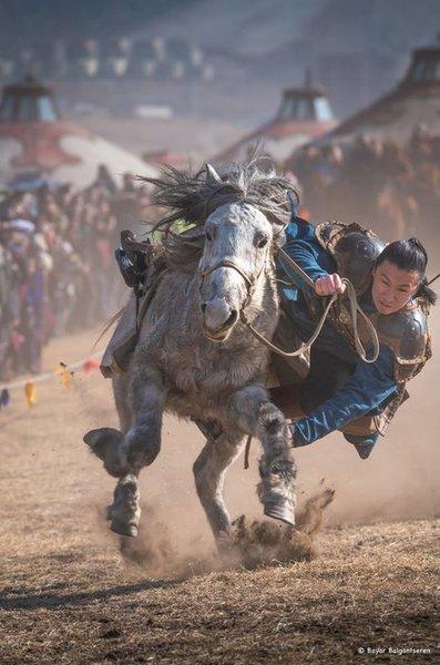 Фестиваль беркута в Монголии. Улан-Батор. 4 марта 2019 года. Дальние дали