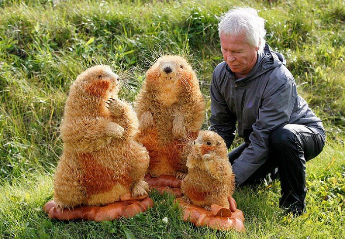 Сибиряк создаёт реалистичные скульптуры животных из кедровой стружки Прикладное