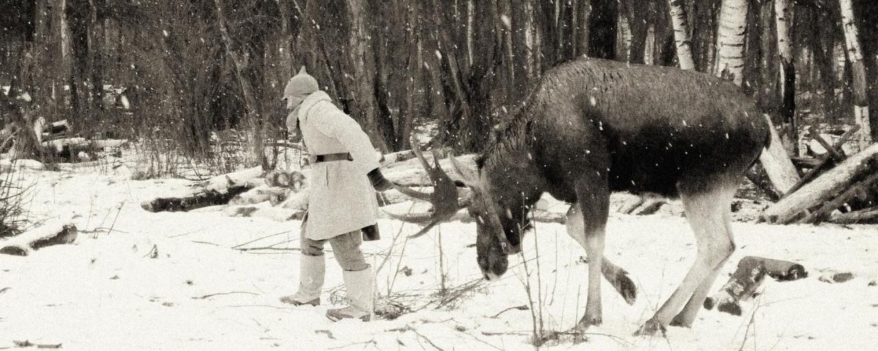 Тамерлан и его горбатые солдаты Война и мир
