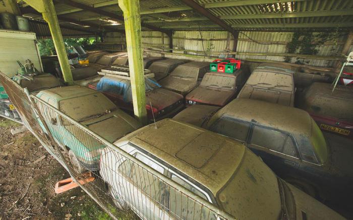 Британец за 10 лет собрал 70 автомобилей Skoda: причина такого поступка заставит задуматься автомобили