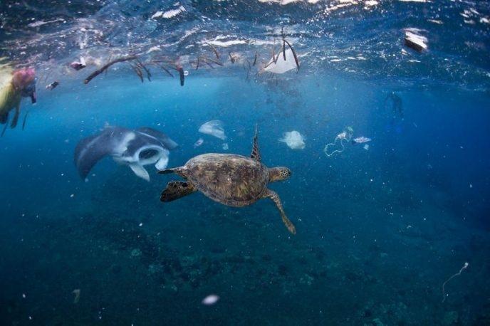 15 фото, которые сильнее всяких слов покажут, как мы загадили нашу планету мир